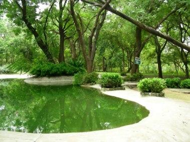 garden-of-indroda-nature-park-gandhinagar.jpg