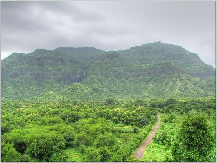 pavagadh hill.jpg
