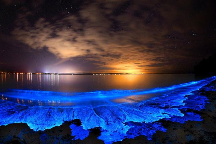 Bioluminescent Caves, Maldives