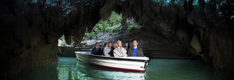 glowworm cave3